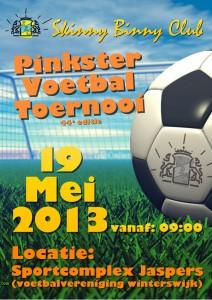 PVT_Poster_2013_WEB